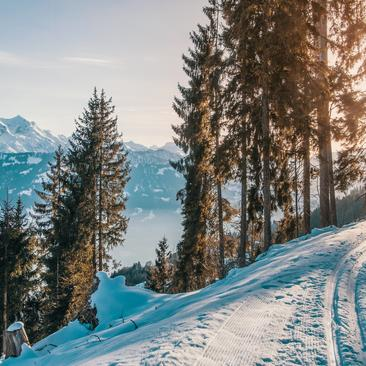 Learn cross-country skiing in the Pyrenees